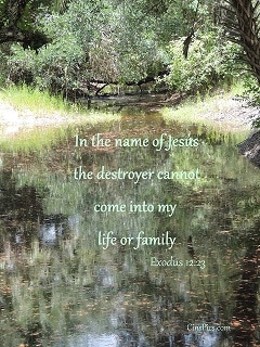 In The Name Of Jesus, the destroyer cannot come into my life or family. Exodus 12:23