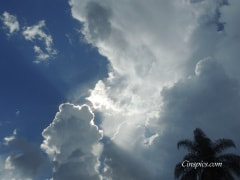 Beautiful Sunrays through clouds with a palm tree by cinspics