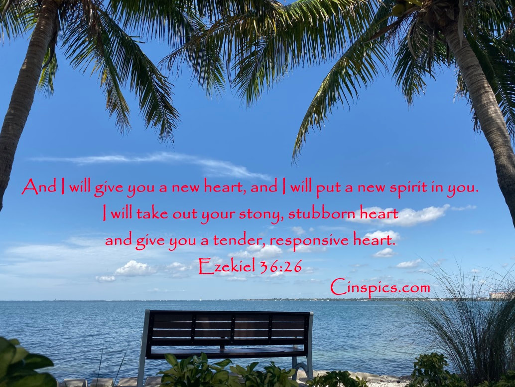 And I will give you a new heart, and I will put a new spirit in you. I will take out your stony, stubborn heart and give you a tender, responsive heart. Ezekiel 36:26 by cinspics