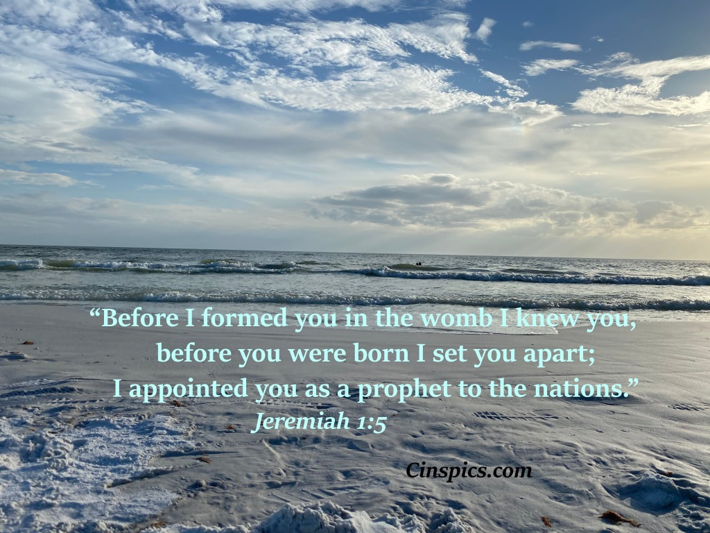 """Before I formed you in the womb I knew[a] you,     before you were born I set you apart;     I appointed you as a prophet to the nations."" Jeremiah 1:5 by cinspics.com"