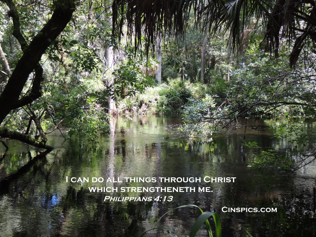 I can do everything in Christ who gives me strength. Philippians 4:13 by cinspics