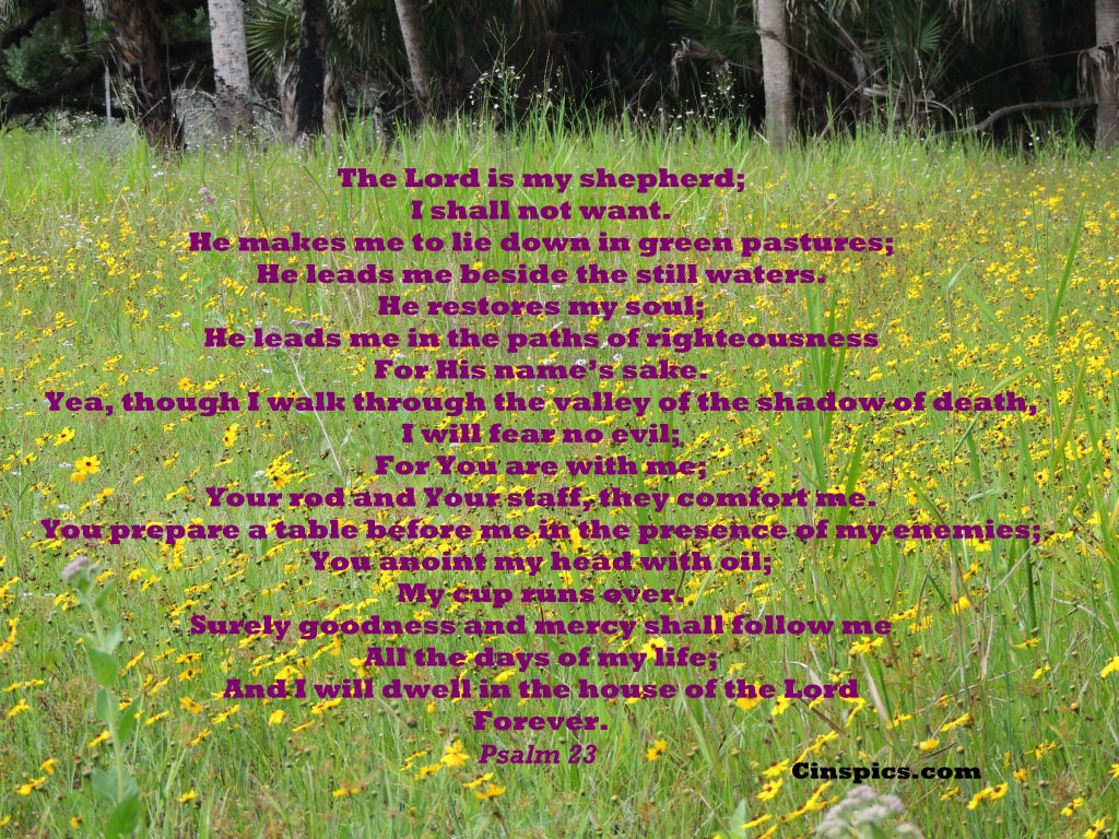 The LORD is my shepherd, I lack nothing. He makes me lie down in green pastures, he leads me beside quiet waters, he refreshes my soul. He guides me along the right paths for his name's sake. Even though I walk through the darkest valley, I will fear no evil, for you are with me; your rod and your staff, they comfort me. You prepare a table before me in the presence of my enemies. You anoint my head with oil; my cup overflows. Surely your goodness and love will follow me all the days of my life, and I will dwell in the house of the LORD forever. Psalm 23  by cinspics